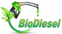 Implementasi Biodiesel B20